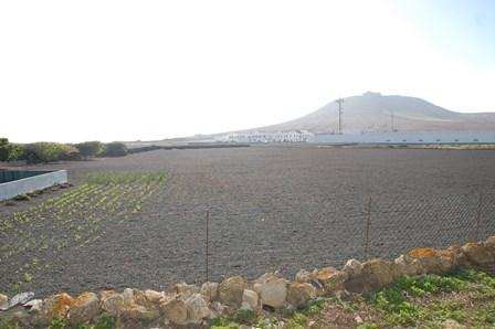 Finca in Teguise